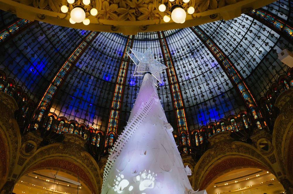 2016 Christmas Display inside Galeries Lafayette Paris | ©2016 Elizabeth Glessner