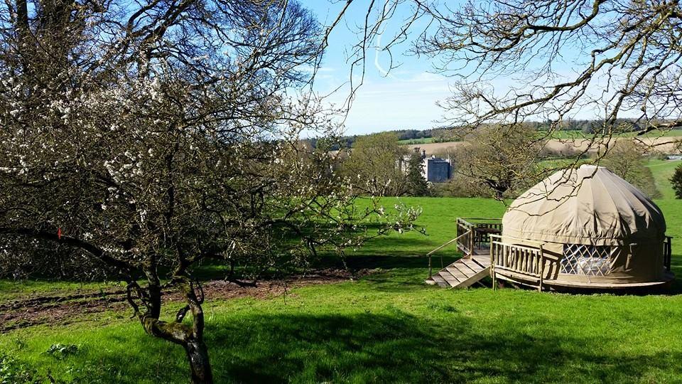 A Rockfarm 'Glamping' Yurt