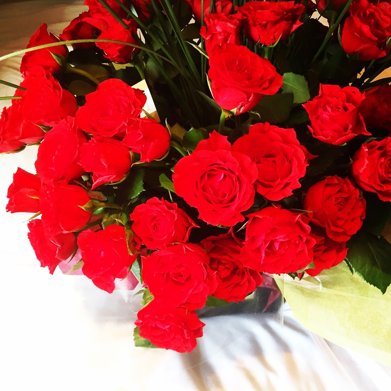 Happy Valentines Day! 80 roses from my special Valentine to start the day- amazing! S H E