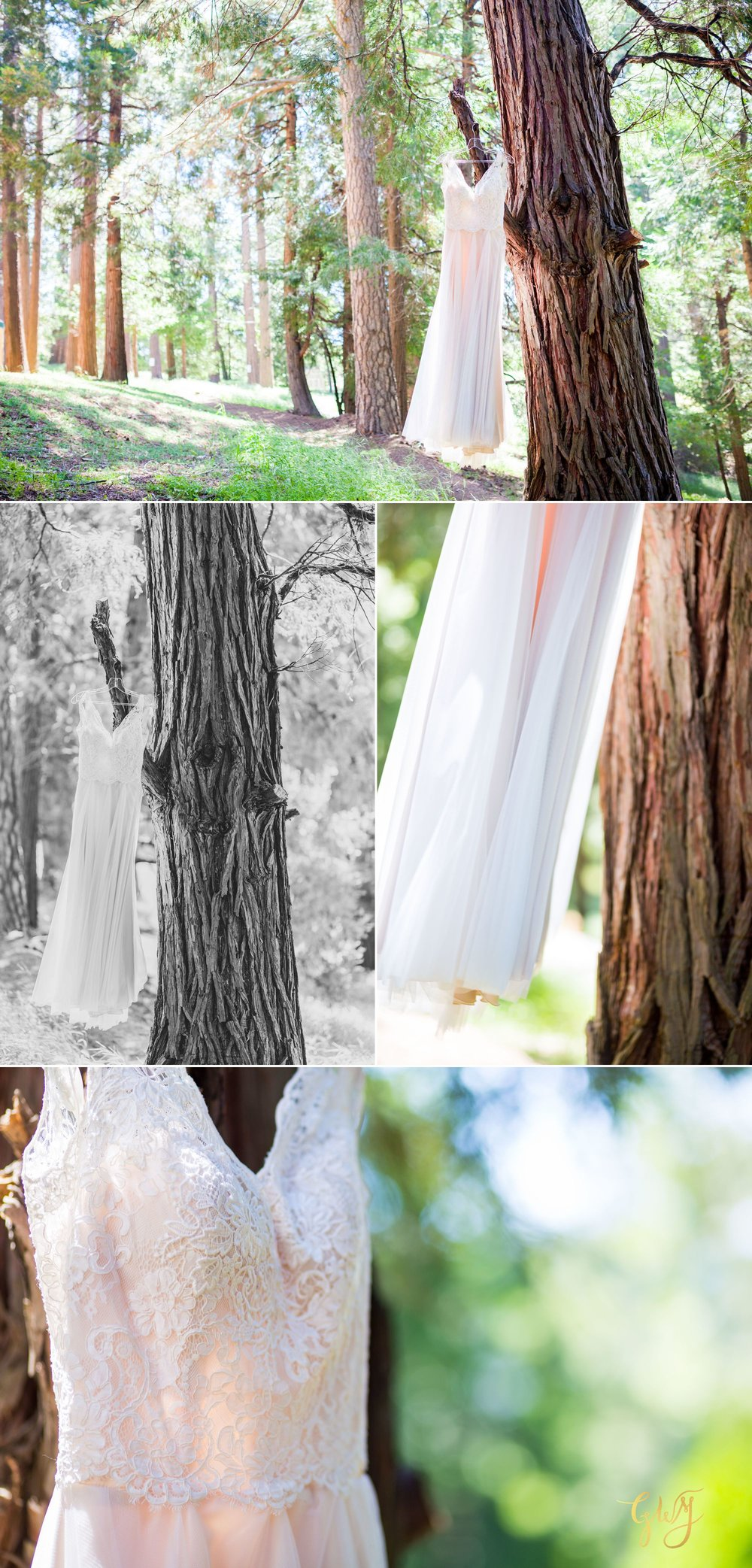 Allison + Jared Southern California Mountain Thousand Pines Christian Camp Wedding by Glass Woods Media 4.jpg