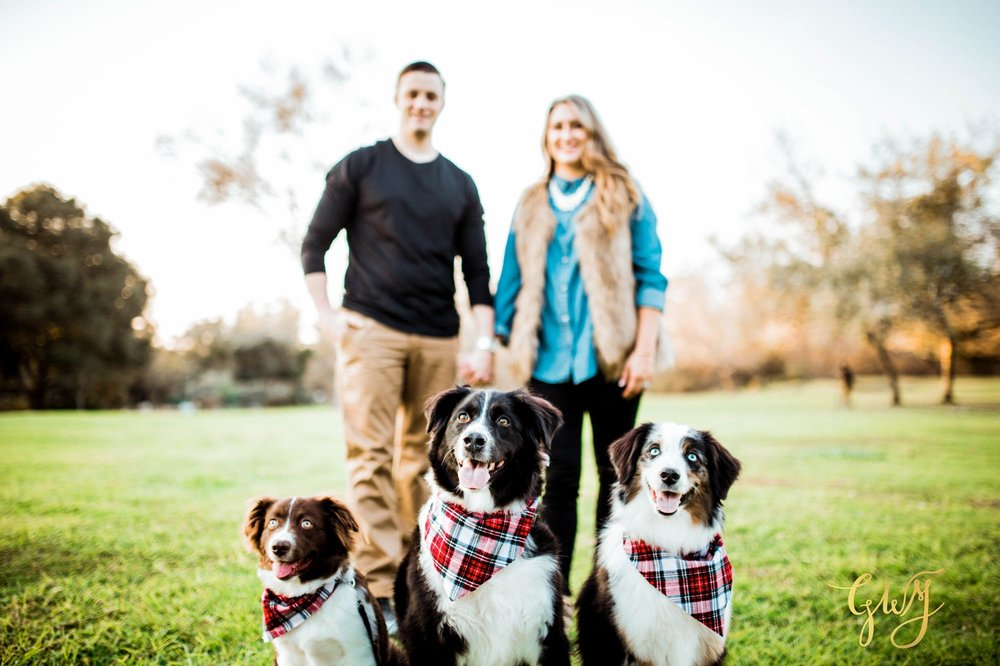 Adams Family Huntington Central Park Australian Shepherd Dogs Puppy Fall Winter Holiday Portrait Mini Session by Glass Woods Media 1.jpg