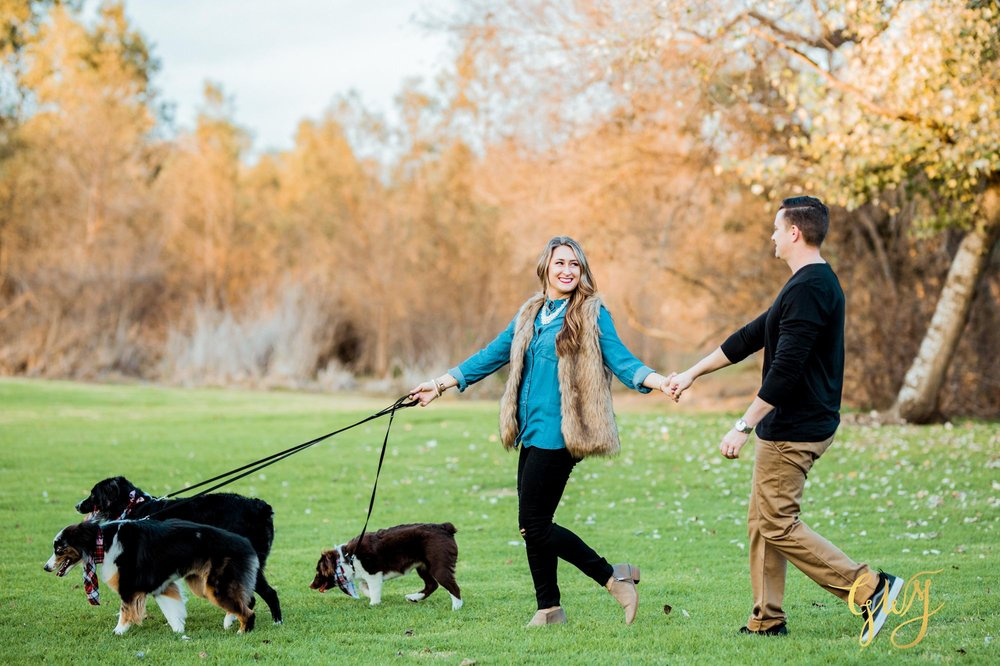 Adams Family Huntington Central Park Australian Shepherd Dogs Puppy Fall Winter Holiday Portrait Mini Session by Glass Woods Media 7.jpg