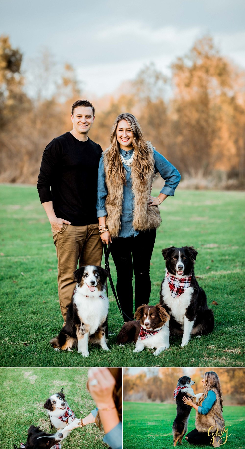 Adams Family Huntington Central Park Australian Shepherd Dogs Puppy Fall Winter Holiday Portrait Mini Session by Glass Woods Media 9.jpg
