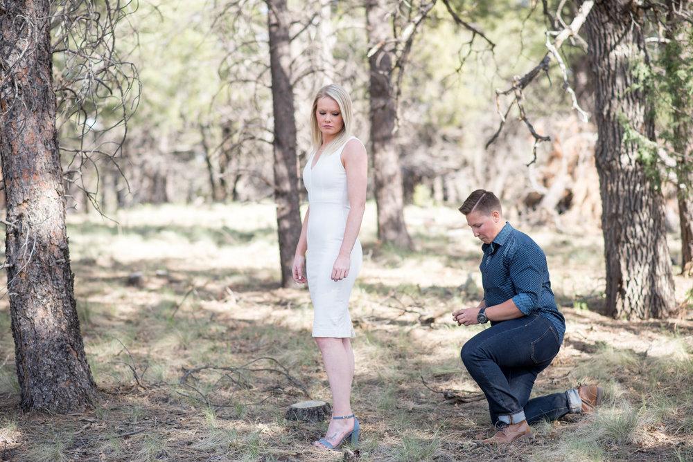 Sierra-Lauren-Engagement-MichelleHoffmanPhotography-65.jpg
