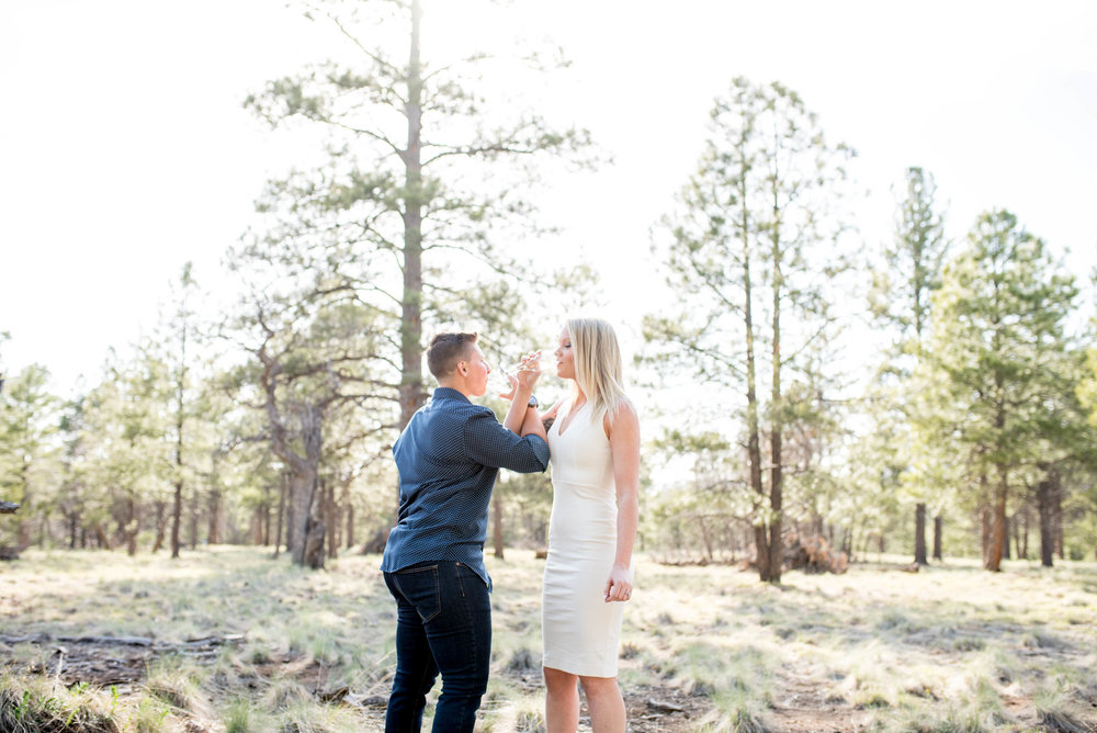 Sierra-Lauren-Engagement-MichelleHoffmanPhotography-164.jpg