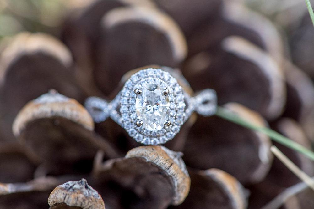 Sierra-Lauren-Engagement-MichelleHoffmanPhotography-173.jpg