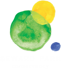 Seward Park Conservancy