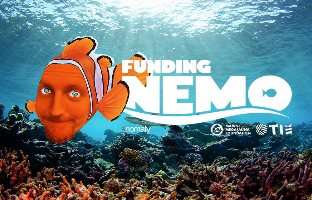 Funding_Nemo_MMF.png