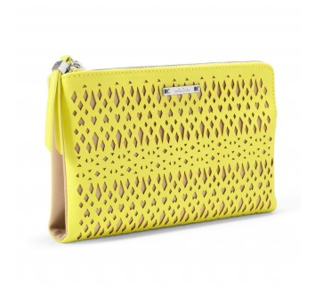 Stella & Dot Double Clutch.