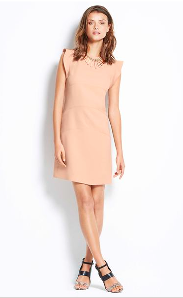 Ann Taylor Flutter Panel Dress.
