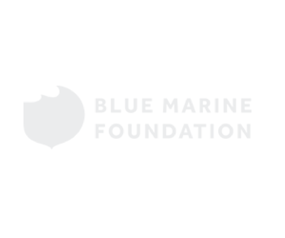 Blue Marine.png