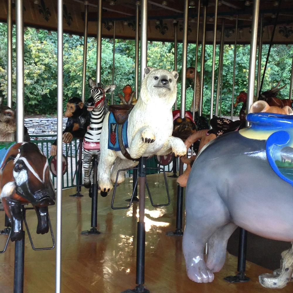 The Carousel!