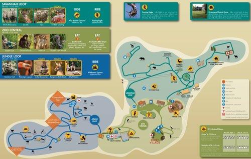 Nashville Zoo Map Making the Nashville Zoo Map — Carden Illustration Nashville Zoo Map