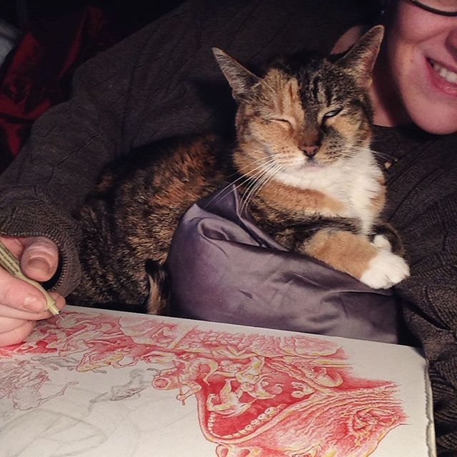My cat Bonez, perhaps the most affectionate (needy!) cat in the world, loves to be as close to me as possible at all times, so I usually find myself having to figure out a way to draw around her.