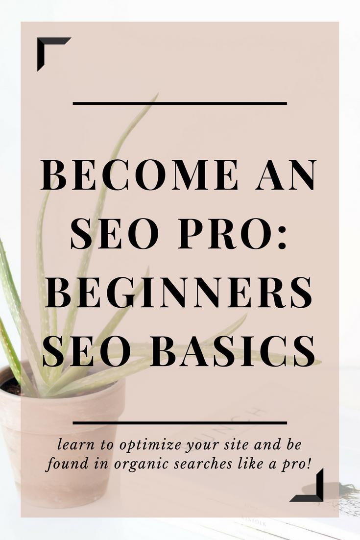 beginners SEO basics