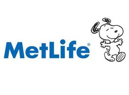 MetLife may be known for life insurance, but the have a competitive market in Tennessee for home and auto insurance as well. They provide a triple line policy discount for having your home, auto, and life insurance policy with MetLife through our agency that could save you valuable dollars on your annual premium.