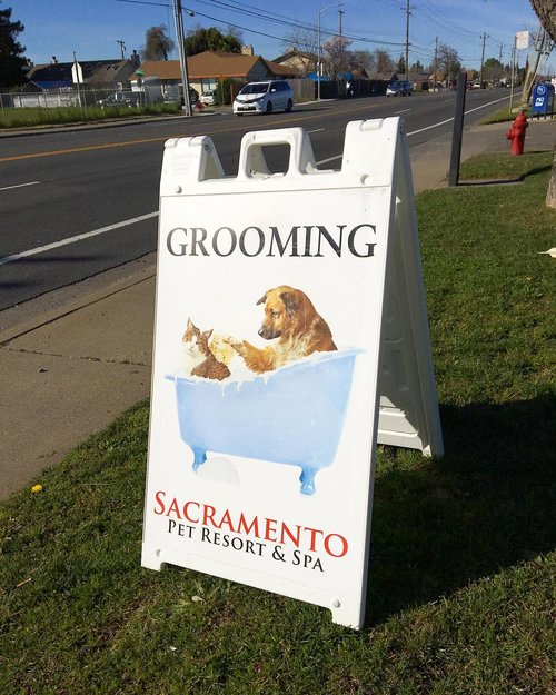 Order a  @plasticade Aframe to help promote your  #business !! Available in various sizes. 🐶😽 This one was for The Sacramento Pet Spa & Resort!