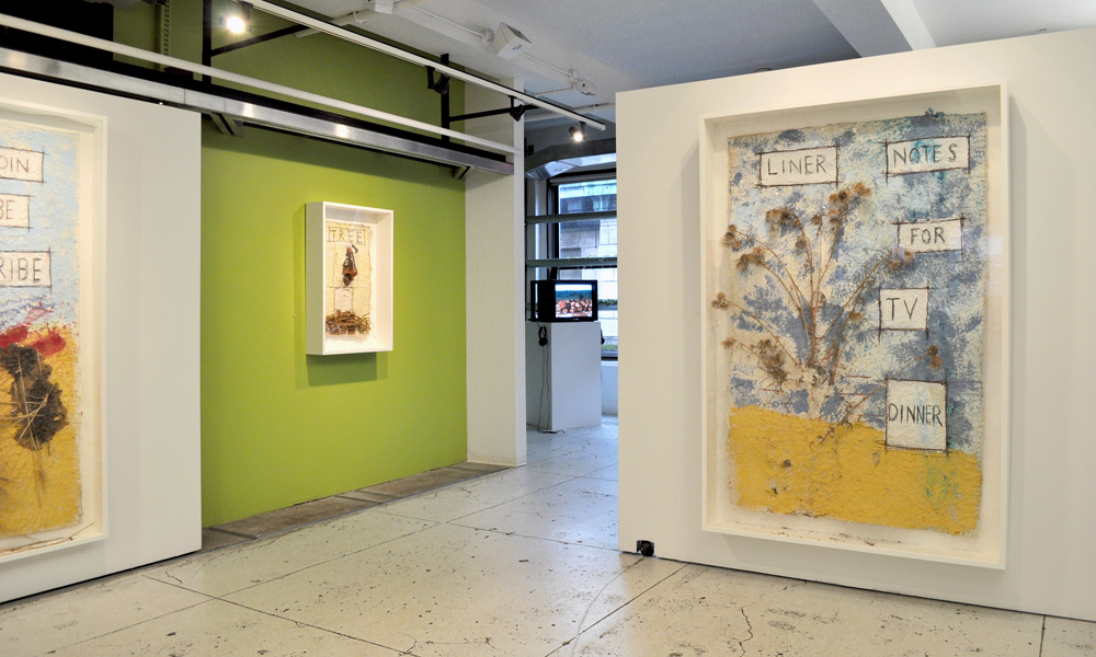 Installation view: Peter Nadin,  Taxonomy Transplanted , The Horticultural Society of New York, December 12, 2012 – February 8, 2013.