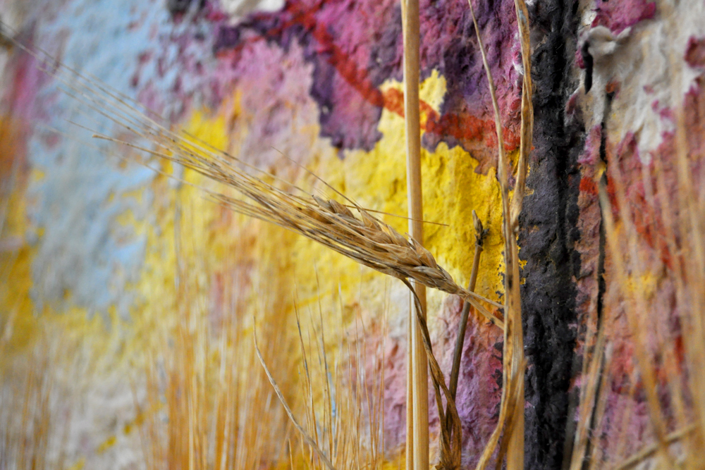 Peter Nadin,  Wheat III  (detail), 2012, Triticum, pigment, handmade bamboo and cattail paper, 64 x 40 inches.