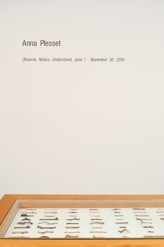 Installation view: Anna Plesset,  Observe, Notice, Understand, June 1  –  November 30, 2010 , The Horticultural Society of New York, May 7 – July 3, 2013.