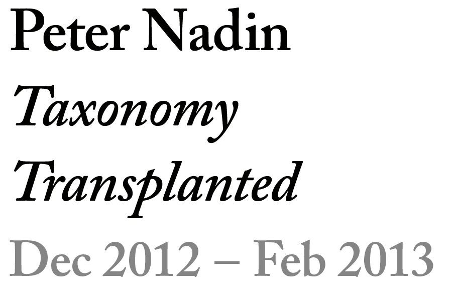 button-nadin.png
