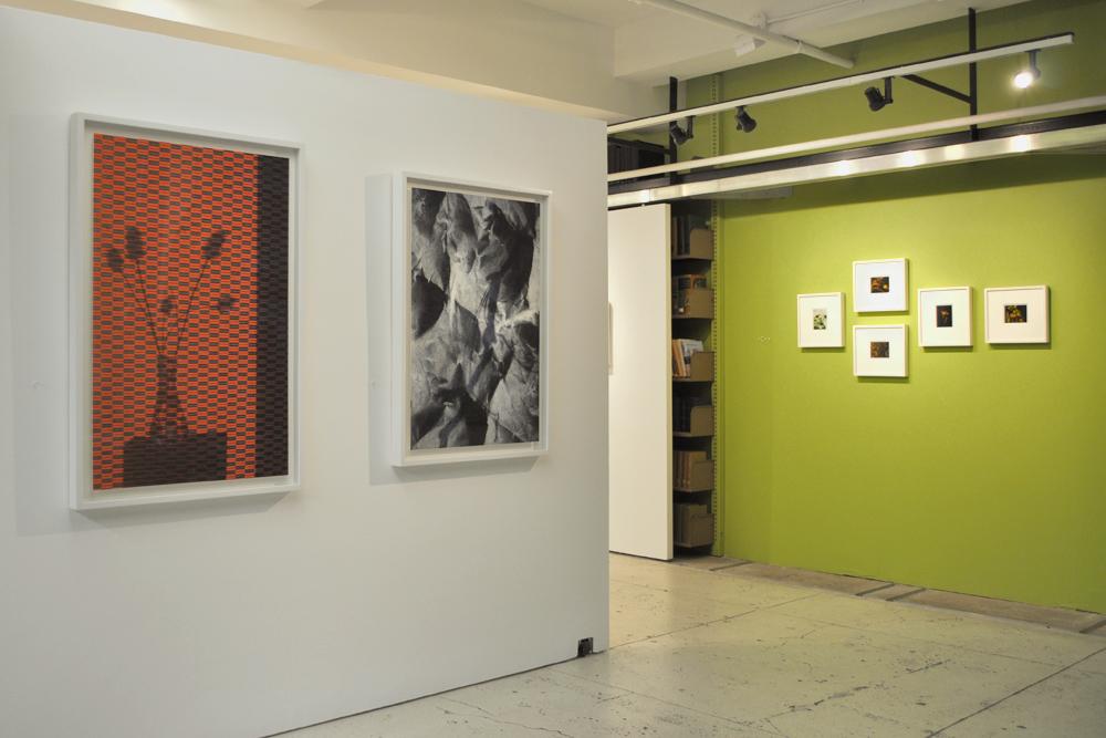 Installation view of  Nature Morte  with Miranda Lichtenstein's  Screen Shadows  and polaroids.