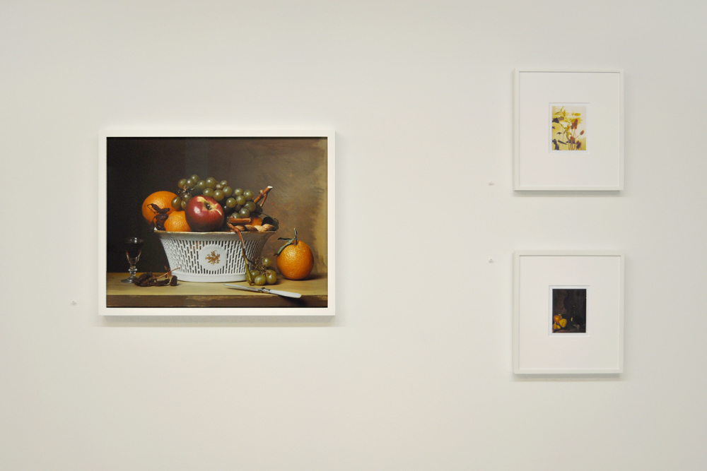 Installation view with Sharon Core's  Early American, Still Life with Chinese Export Basket  (2007) and Miranda Lichtenstein's polaroids.