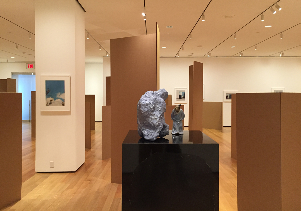 Installation view,  Rachel Harrison: Perth Amboy , The Museum of Modern Art, March 19 – September 5, 2016.