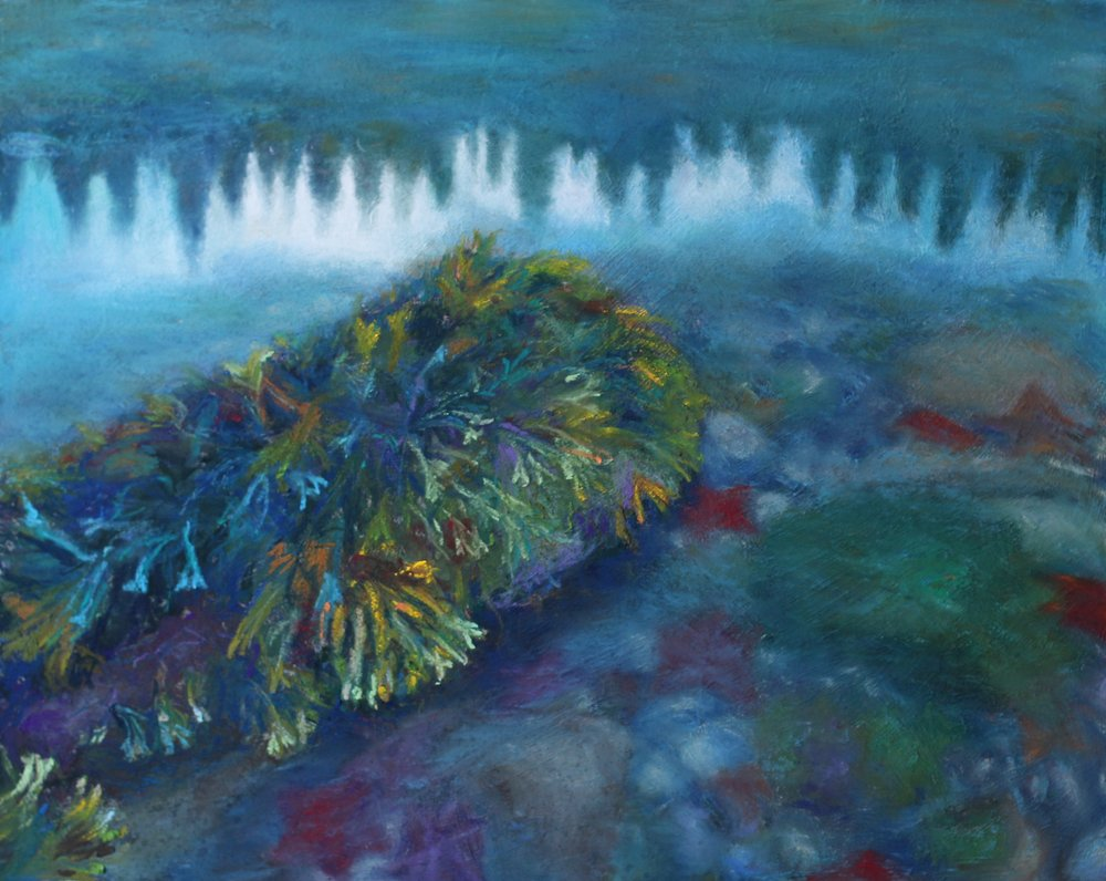 """A World Within"" (Burnaby Narrows, Gwaii Haanas), pastel on panel, 16"" x 20""  Sold"