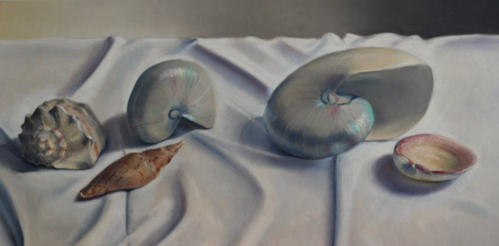 """Shell Quintet"", pastel on paper, 12"" x 24""  Sold"
