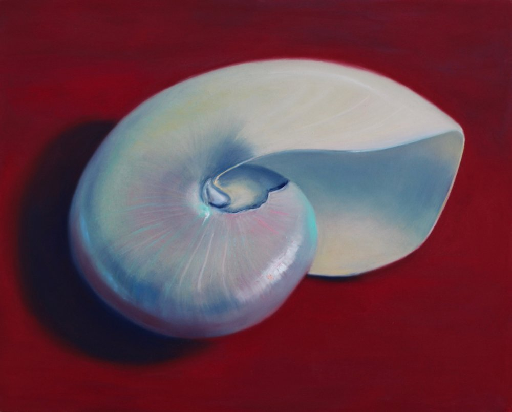 """Nautilus"", pastel on board, 16"" x 20""  • Sold"