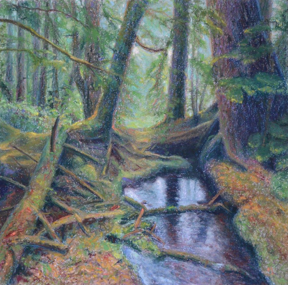 "Anja Karisik, ""Forest Interior, Windy Bay, Haida Gwaii"", pastel on board, 18"" x 18"""