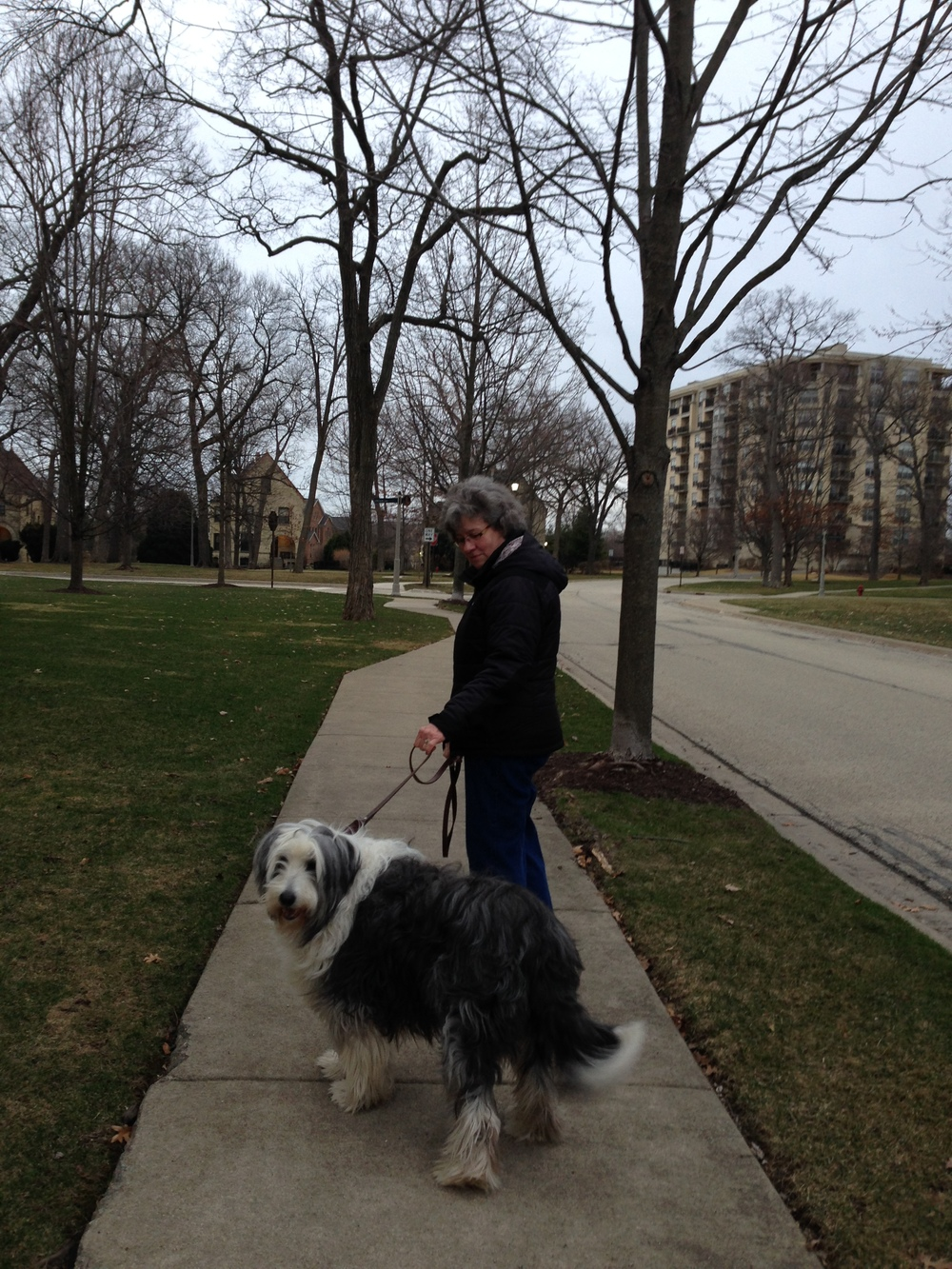 Fort Sheridan is Dog Friendly