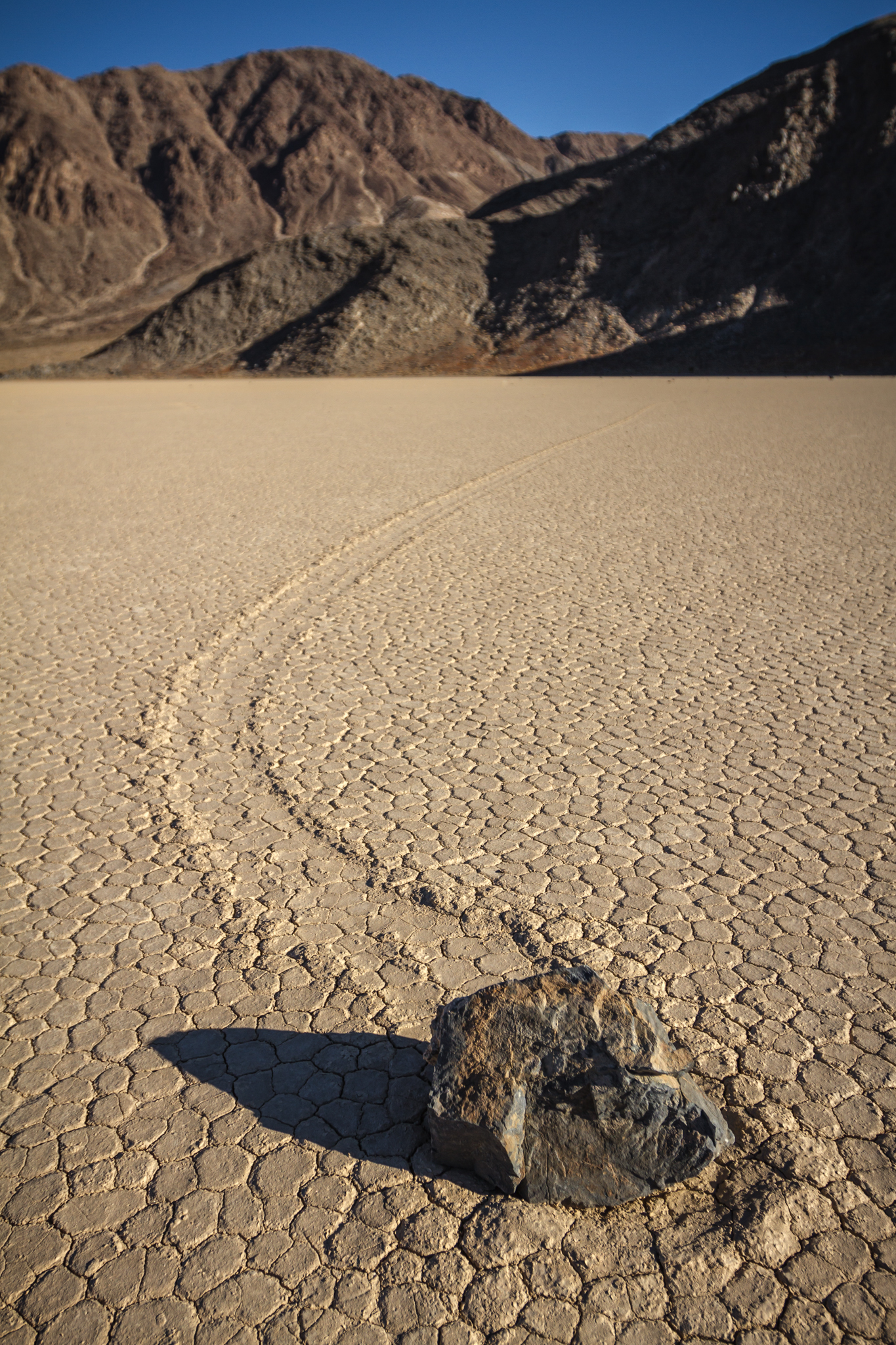 This is the Racetrack in Death Valley. The rocks move over the dried up lake bed and leave these trails.