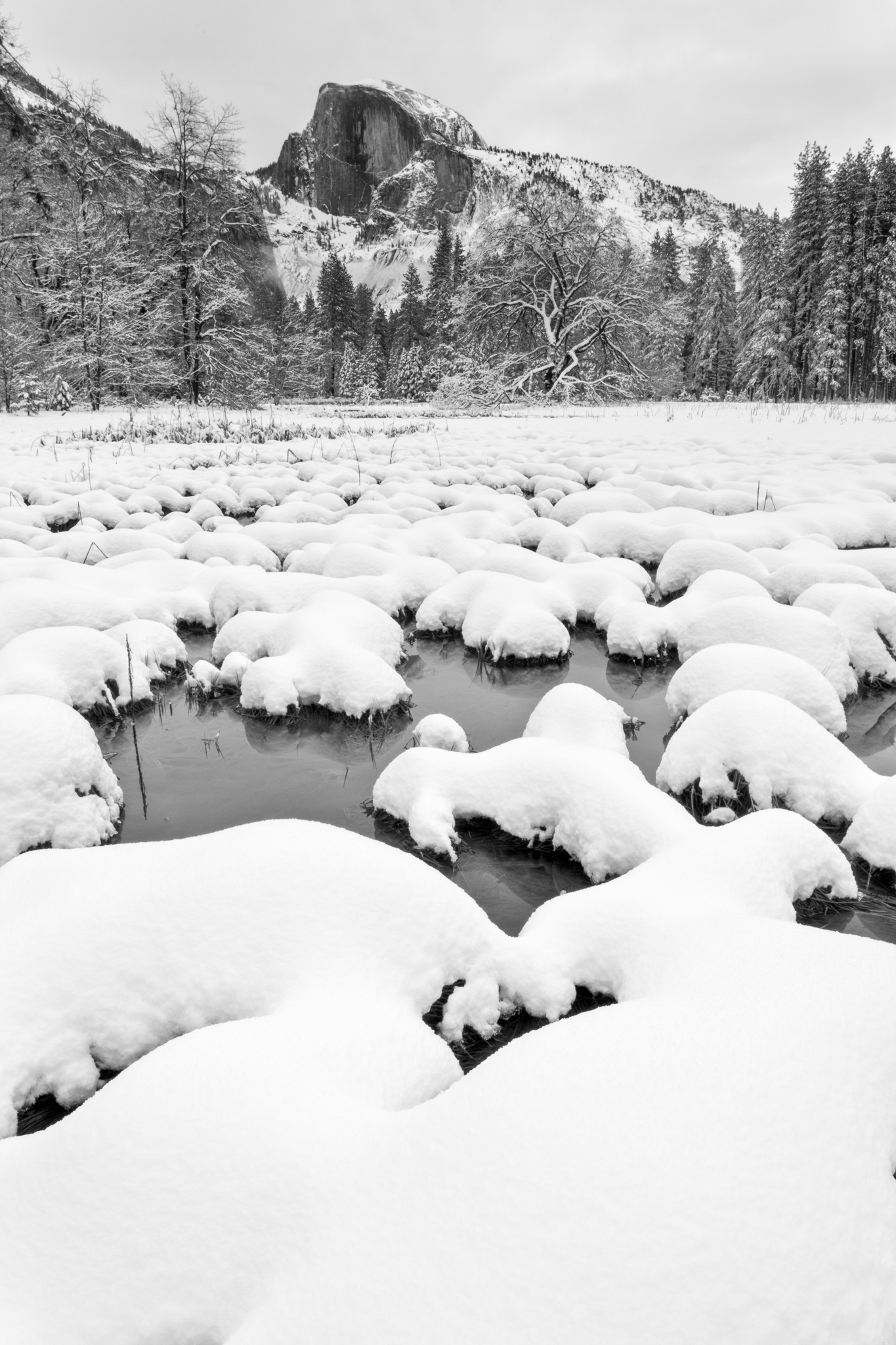 Cooks Meadow in Yosemite National Park is a great place to practice winter photography.