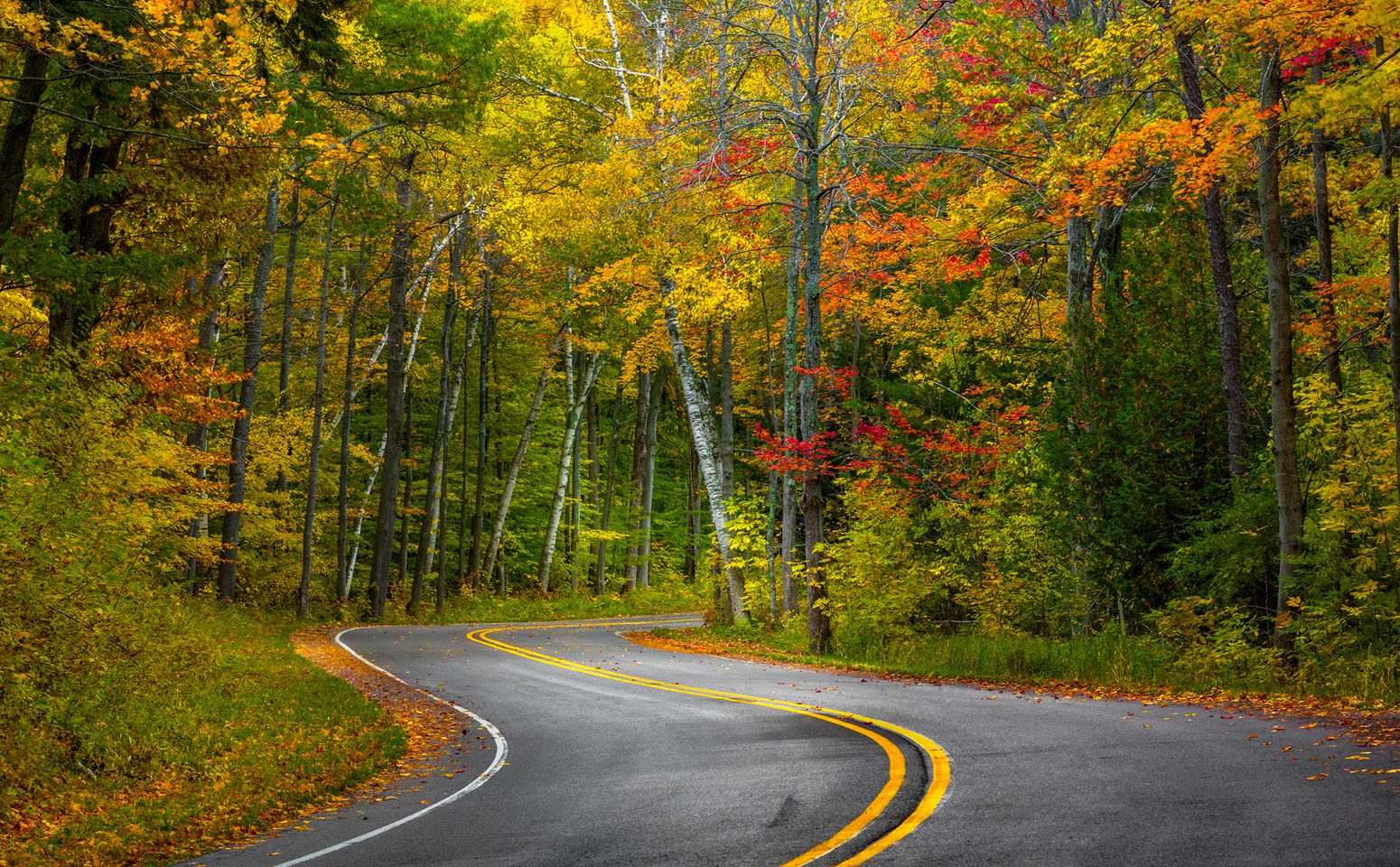 Fall road photo