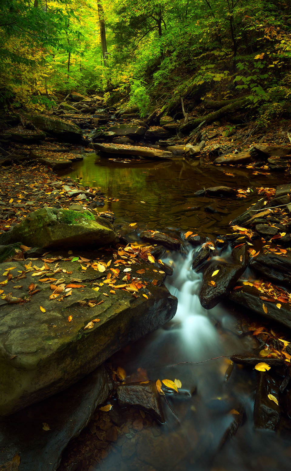 ricketts glen fall photo