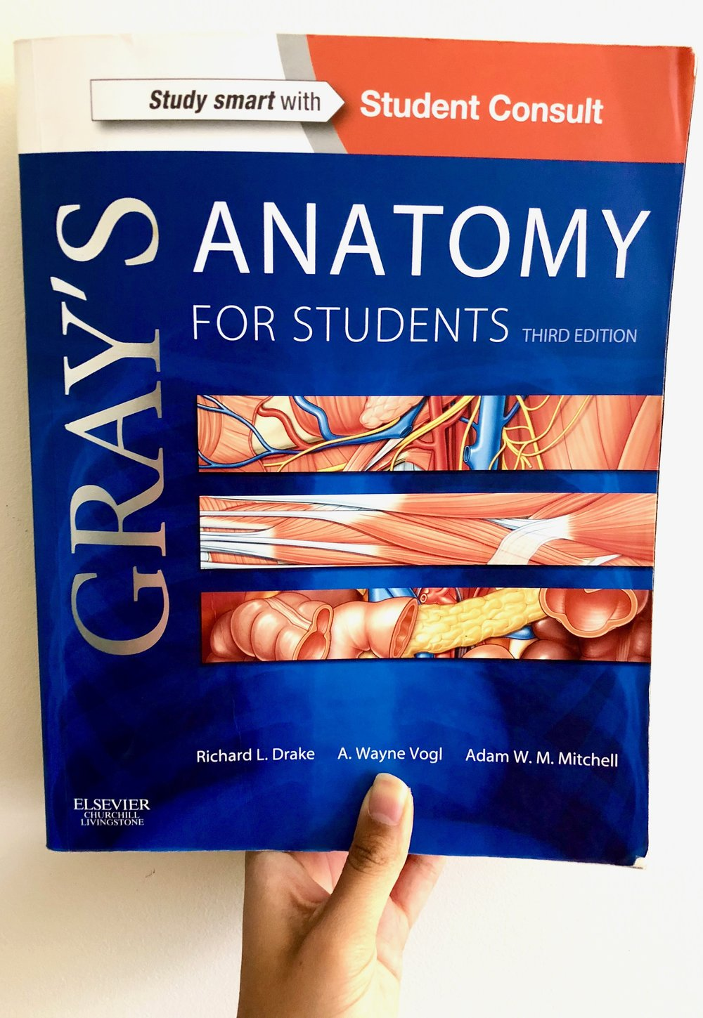 The 10 Best Resources to Learn and Master DPT School Anatomy ...