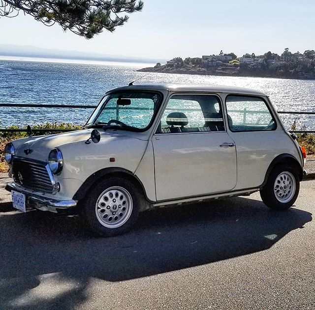 "Forty years ago this guy was like, ""One night in Victoria..."" and look at him now.  #stillhere #views #usainthebackground #ferryrides #eventuallyillcomehome #maybenot #minicooper #mini #michaelcaine #italianjob #canada"