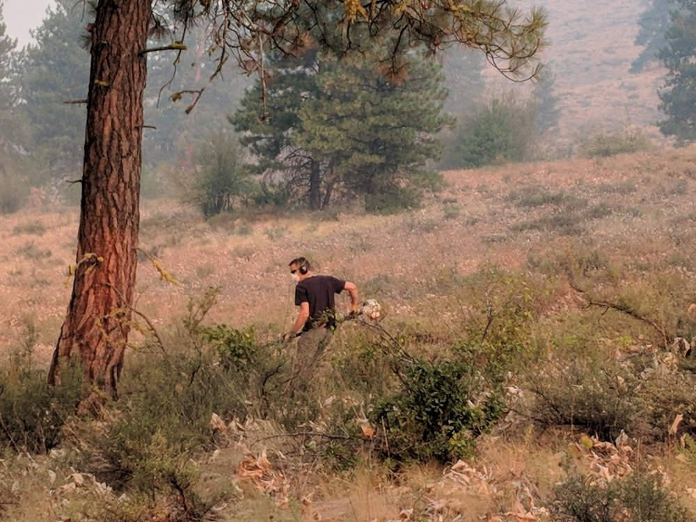 Peter Polson cutting brush and limbing trees to prevent the wildfire from advancing.