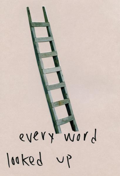 dfw_every_word_1_1.jpg