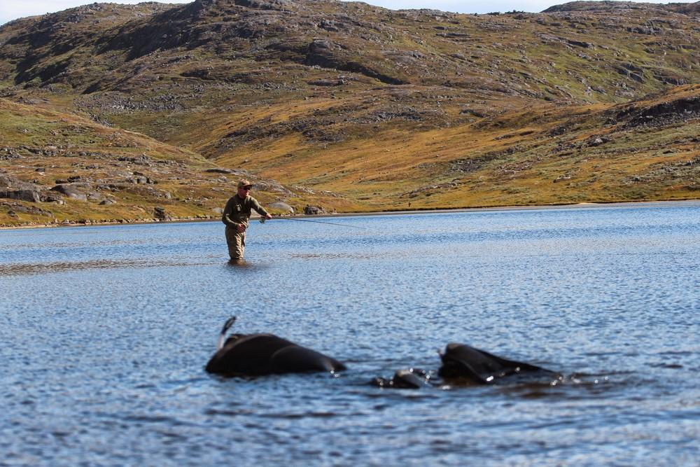 fly-fishing-in-greenland-2110.JPG