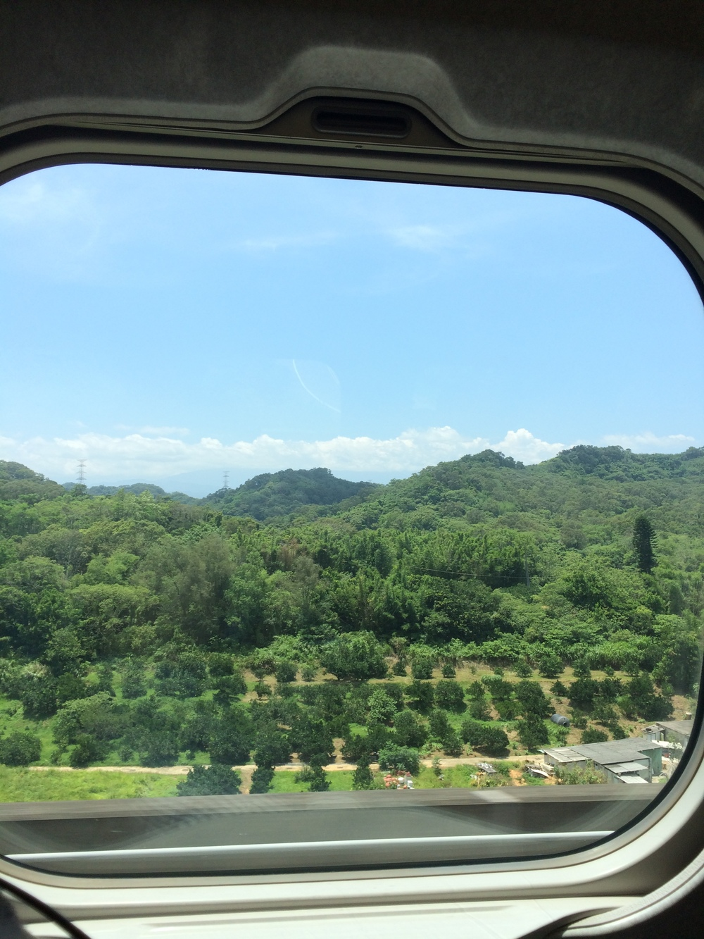 Here's the view from the bullet train. We by lots of greens.