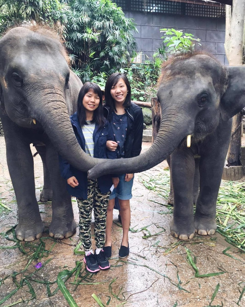 Arsami and me with the elephants!