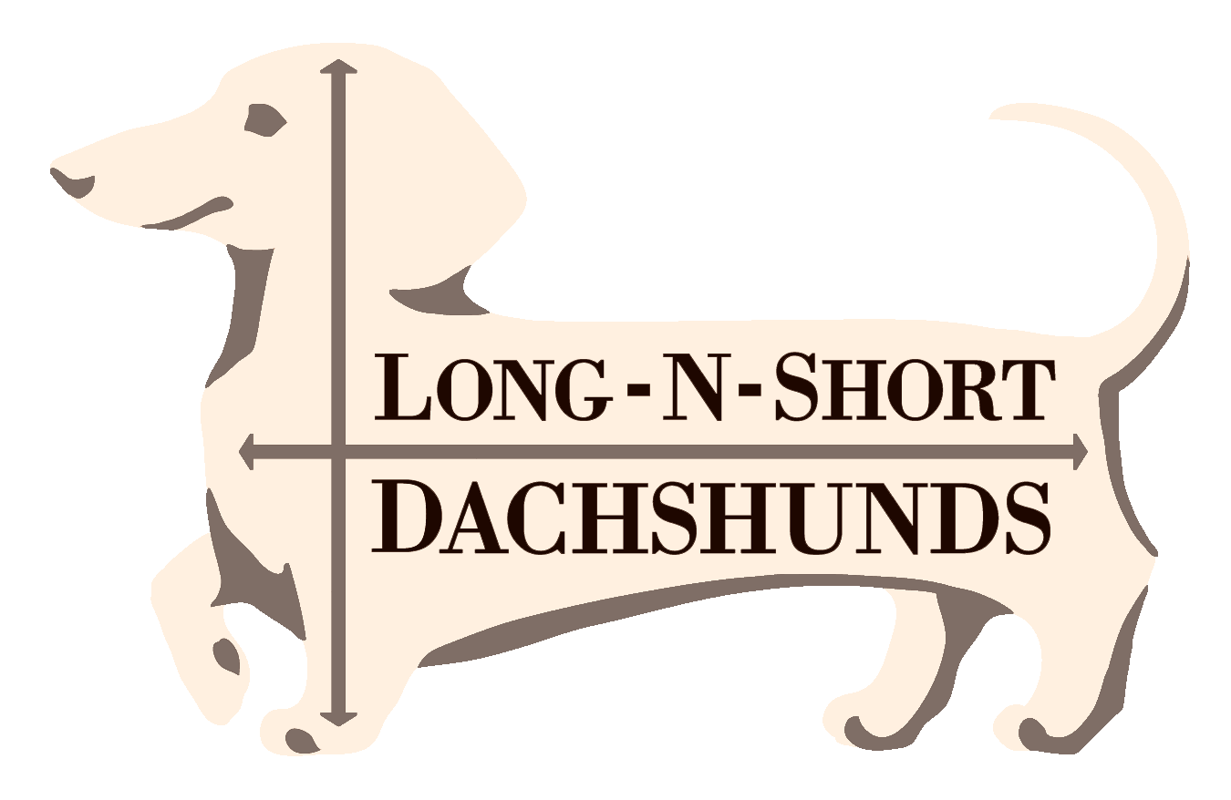 Long-n-Short Dachshunds