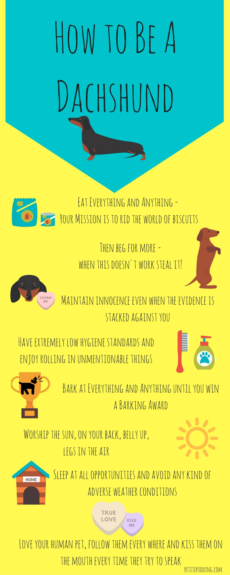 http://mypandacantdance.co.uk/how-to-be-a-dachshund-infographic