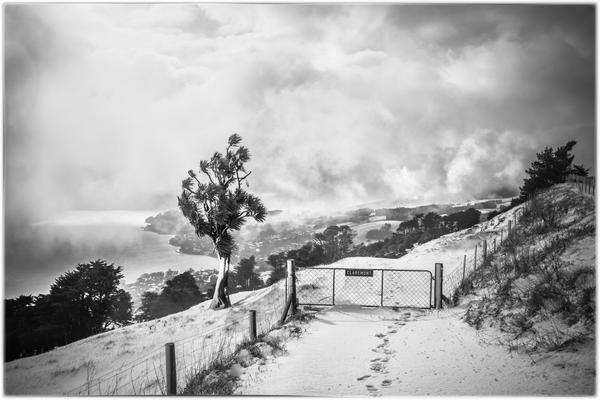 Otago Peninsula in winter- photo Lisa Welch