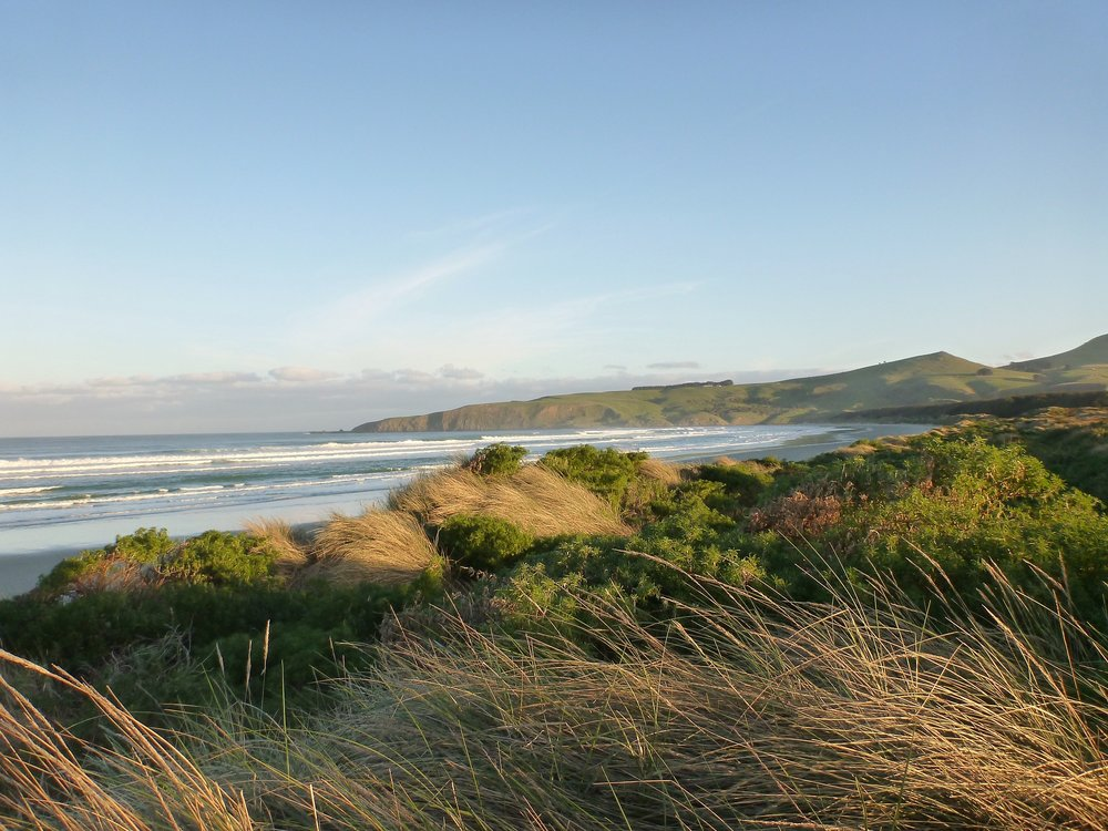 Otago Peninsula beach