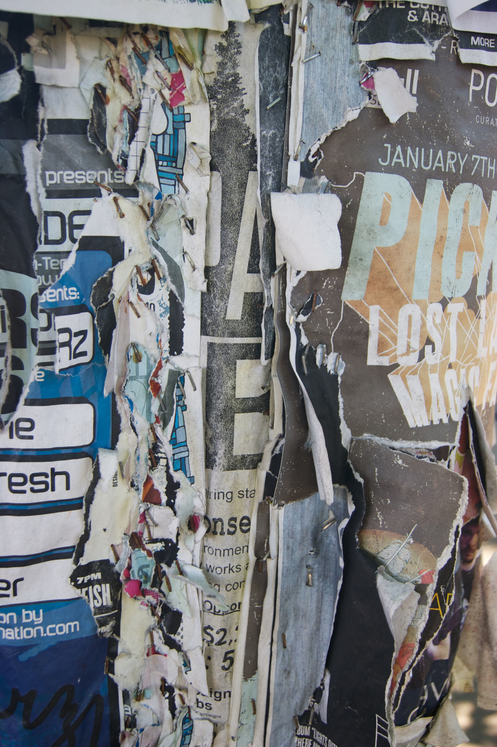 Telephone poles in Portland are covered with layers of ads
