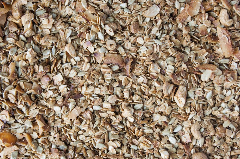 granola zoom.jpg